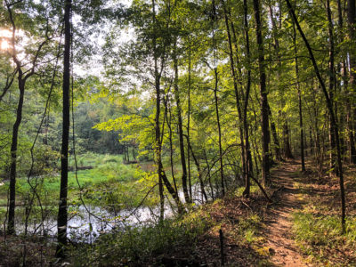 Hiking trail at Congaree Creek Heritage Preserve