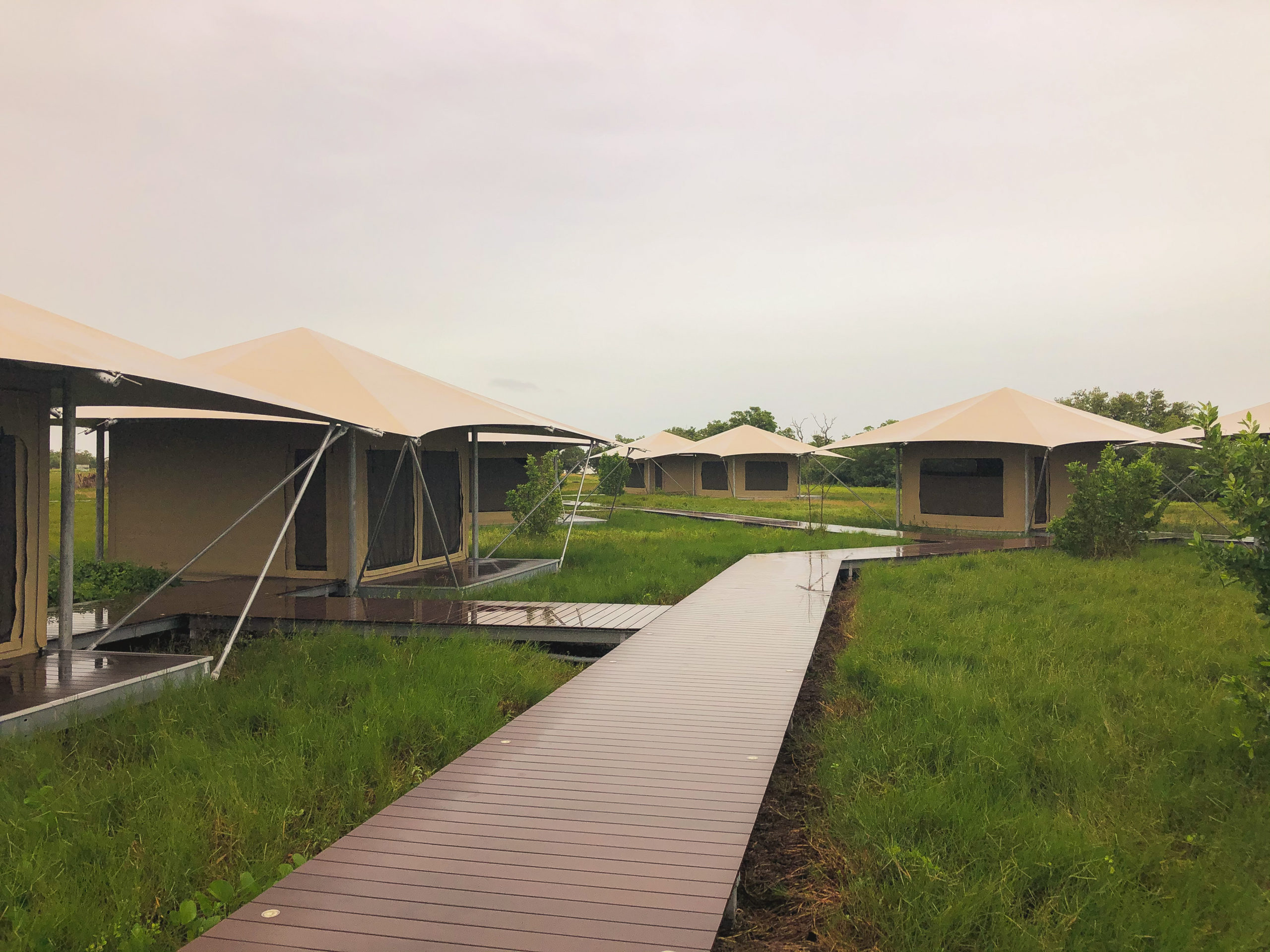Glamping safari tents of Everglades National Park