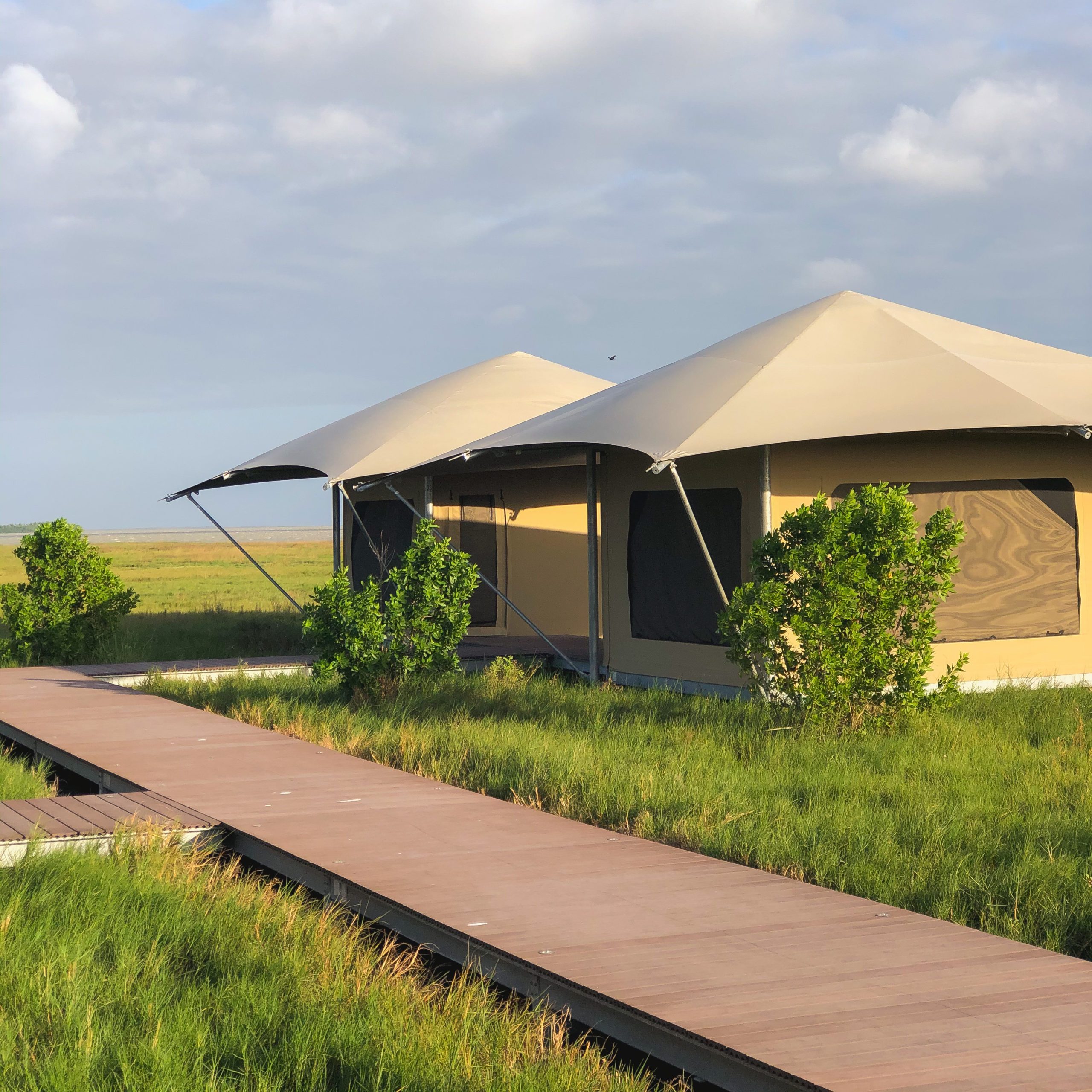 Canvas safari tents glamping