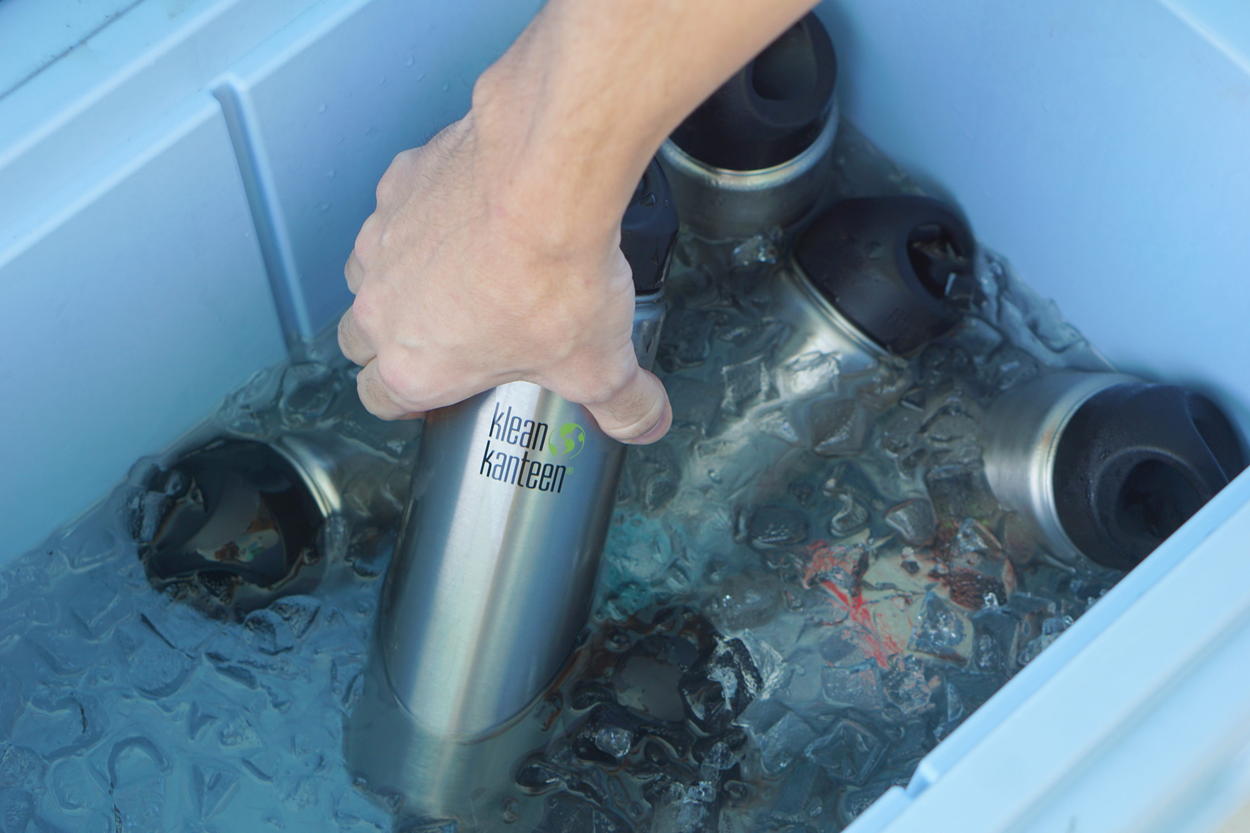 Honest Eco Dolphin Watch sustainable nature tours reusable water bottles key west Florida