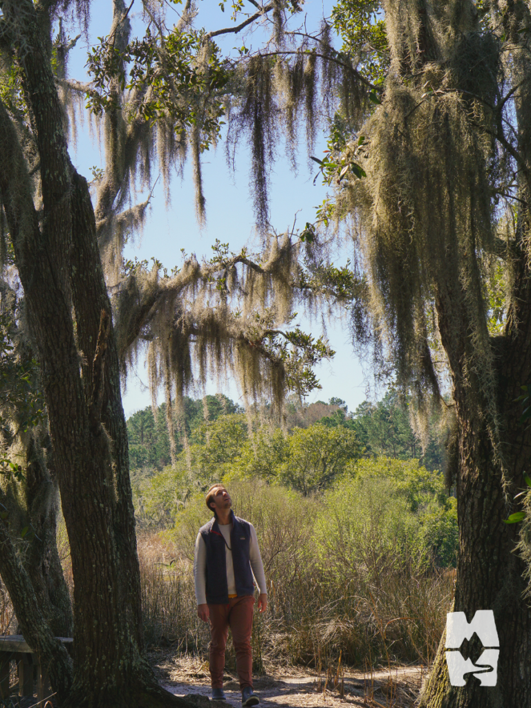 man standing under trees with spanish moss outside of Charleston south carolina