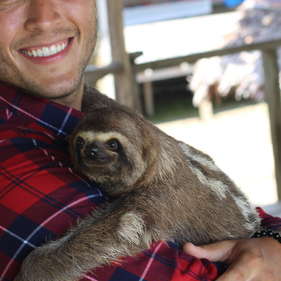 captured sloth being forced to pose for photos