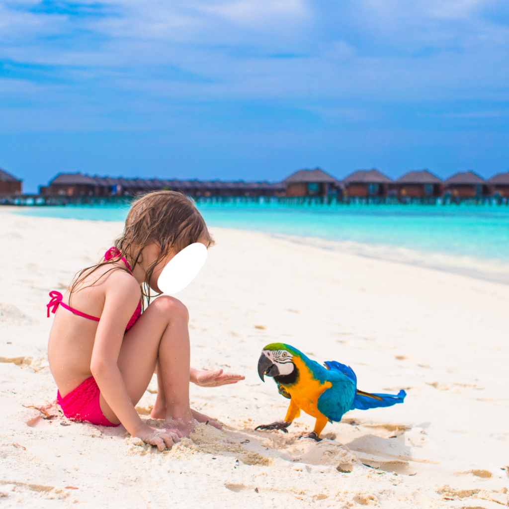 child tourist with parrot on the beach
