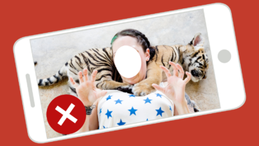 exploiting a tiger cub for a wildlife selfie