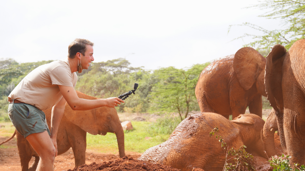 Young man filming baby elephants rolling in a mud bath at Sheldrick Wildlife Trust